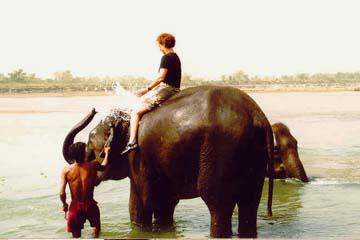Baden mit den Elefanten im Chitwan National Park, Nepal