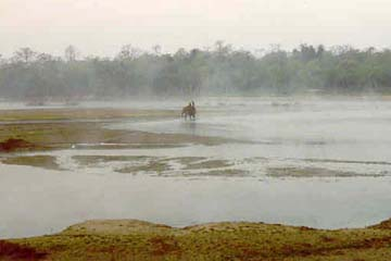 Morgenstimmung am Fluß, Chitwan National Park, Nepal