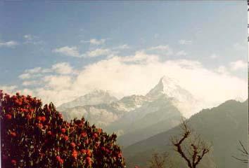 Sonnenaufgang und Blick auf die Berge bei Ghorepani, Annapurna, Nepal