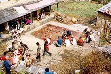 Schlachtung eines Büffels in Ghandruk, Annapurna, Nepal