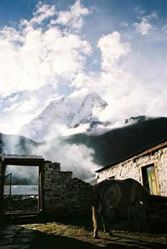 Tagesbeginn in der Sonam Friendship Lodge in Dingboche, Everest-Region, Nepal