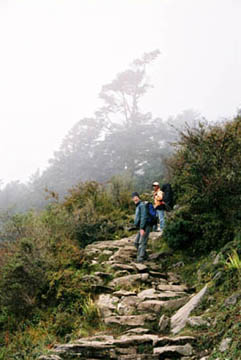 Steintreppen auf dem Weg nach Namche Bazar, Everest-Region, Nepal