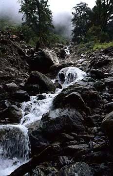Wasserlauf auf dem Weg nach Lama Hotel, Langtang Trek