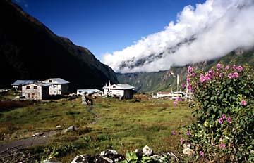 Auf dem Weg nach Kyanjin Gompa, Langtang Trek