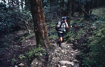 Der lange Aufstieg von Tholu Syabru nach Laurebina, Nepal