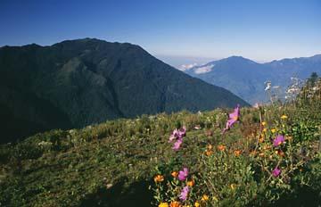 Aussicht ins Tal von Sing Gompa