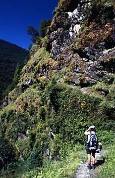 Kurz vor der Ankunft in Dhunche, Langtang Trek in Nepal