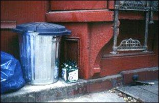 Stilleben in East Village, New York