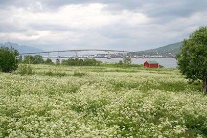 Vesterälen-Landschaft auf Hinnoya,  Norwegen