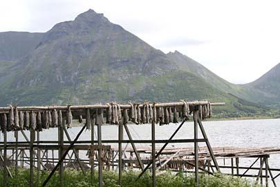 Gestelle für Stockfische, Vesteälen, Norwegen