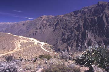 ein Wanderweg entlang der Schlucht des Colca Canyon, Peru