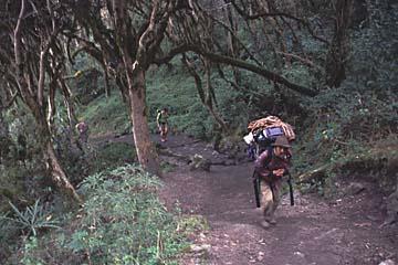 der Aufstieg am zweiten Tag macht auch Portern zu schaffen, Inka Trail, Peru