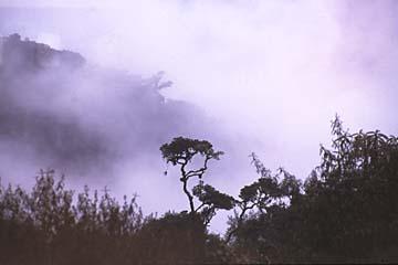 Aussichten vom 2. Camp des Inka Trails, Peru