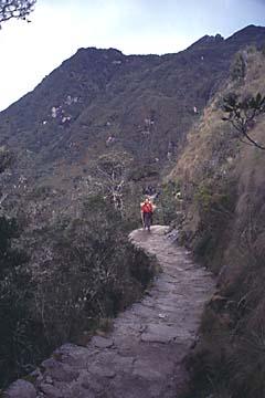auf dem Weg zum 3. und letzten Pass, Inka Trail, Peru