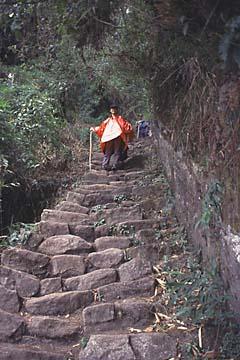 die 2000 Stufen des 3. Tages bis runter zum Camp, Inka Trail, Peru