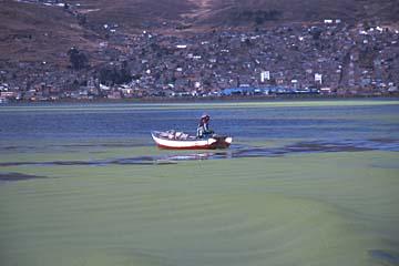 ein Fischer auf dem Titikaka-See, Peru