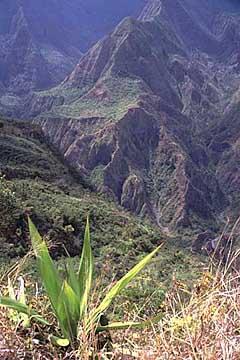 Auflick vom Aussichtstableau auf dem Weg zum Roche Verre Bouteille, Réunion