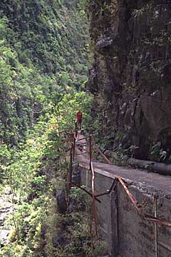 auf der Wanderung zur Cascade du Chaudron, La Réunion