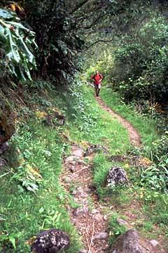 der Wanderweg zur Grand Sable bei Le Bélier, La Réunion