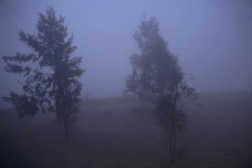 die Aussicht am Abend in Plaine des Cafres, Réunion