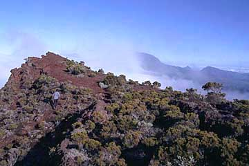 an der Abbruchkante am Crater Comerson, Réunon
