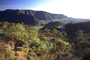 am Pass Col de Bellvue in der Plaine, Réunion