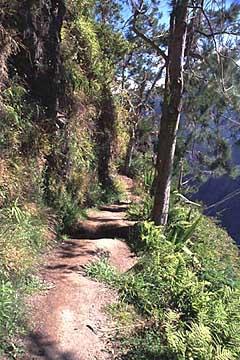 Wanderweg im Cirque de Mafate, Réunion