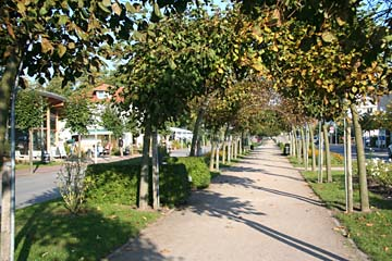 Arkaden säumen den Fußweg zum Strand, Seebad Baabe, Insel Rügen