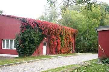 Herbst bei Schloß Spyker, Nordrügen