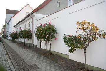 August-Bebel-Straße in Putbus, Insel Rügen