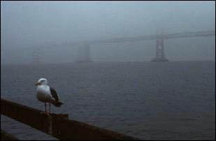 die Oakland Bay Bridge bei Nebel, San Francisco