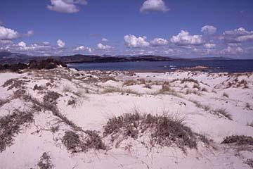 Sanddünen am Capo Comino im Osten von Sardinien, Italien