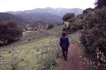 beim Tempel Antas im Westen von Sardinien, Italien