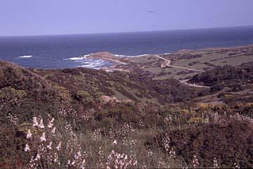 die Küsten am Capo Pecora