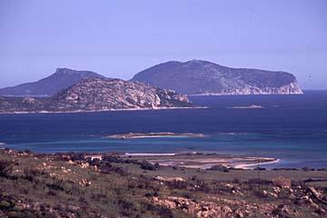 Aussicht auf die Bucht der Isola Tavolara, Sardinien, Italien