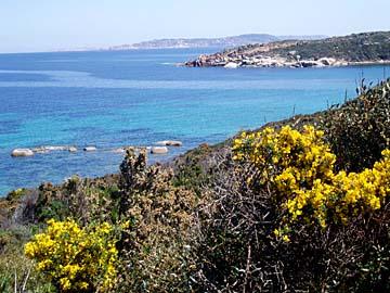 die Küste der Insel Sardinien im italienischen Mittelmeer