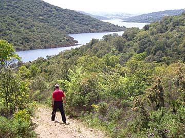 Macchia auf der Wanderung am Lago di Liscia