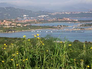 die Macchia bei Rotonto auf Sardinien, Italien