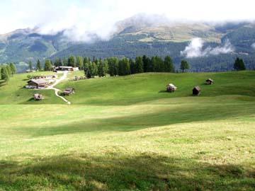 an den Rotwandwiesen, Südtirol