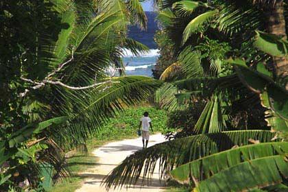 Ein idyllischer Weg im Norden der Insel La Digue