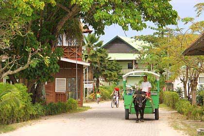Im Ort La Passe begegnet man Fahrrädern und Ochsenkarren