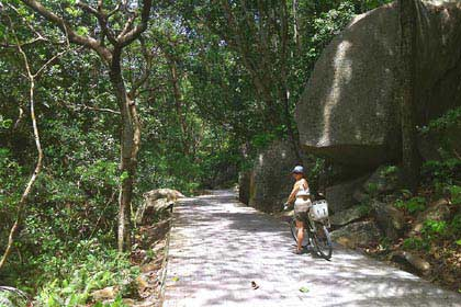 Mit dem Rad unterwegs zur Grand Anse auf la Digue