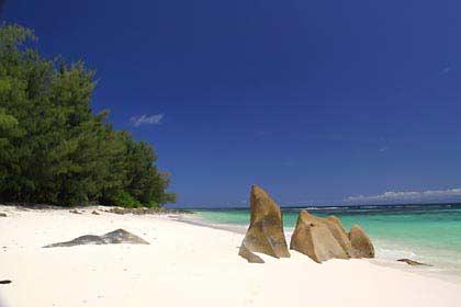 Der Anse Kerlan ist ein weiterer Traumstrand der Seychellen Insel Praslin