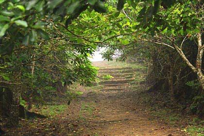 Fußweg zum Aussichtspunkt The Mission auf Mahé