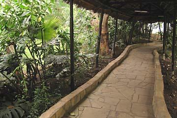 Weg in unserem Hotels Jakaranda in Arusha