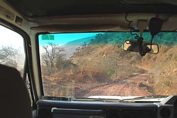 Auf der Fahrt hinunter in den Ngorongoro Krater in Tansania