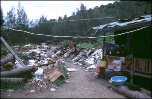 Müllhalden auf Phi Phi Island, Thailand