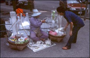 Strassenverkäufer in Bangkok