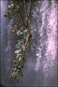 am Kursunlu-Wasserfall bei Perge an der türkischen Riviera