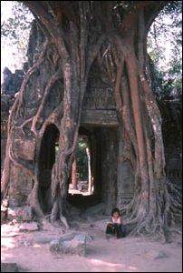 Flöte spielendes Mädchen in Ta Prohm in Angkor, Kambodscha